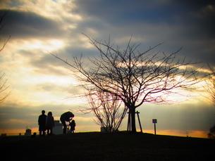 夕景のシルエット FYI00177952