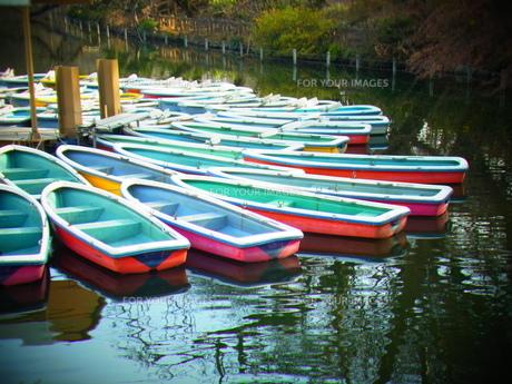 ボート FYI00177953