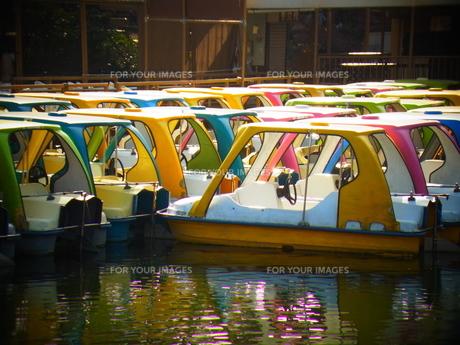 足こぎボート FYI00177960