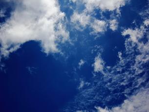 青空 FYI00185561