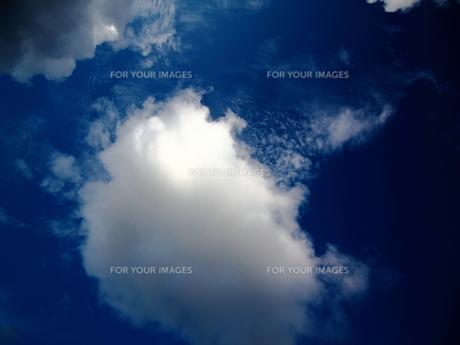 雲 FYI00185576
