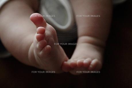 赤ちゃんの足 FYI00185598