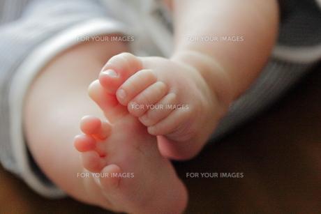 赤ちゃんの足 FYI00185609