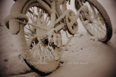 雪で真白になった自転車 FYI00186865
