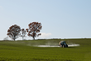 秋の農作業 FYI00189074