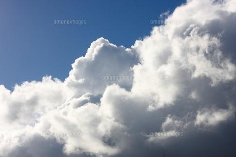 雲 FYI00192202