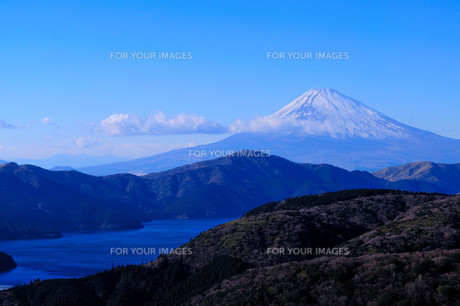 芦ノ湖と富士山 FYI00193531