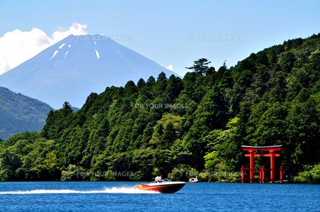 芦ノ湖の夏の風景 FYI00193532