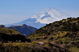 合間の富士山 FYI00193548