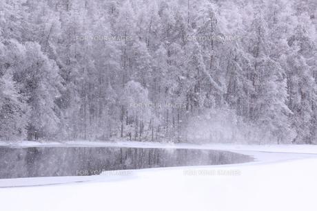 水辺の静寂な時間 FYI00194314