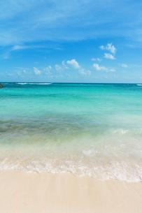 エメラルドグリーンのカリブ海の渚 FYI00198031