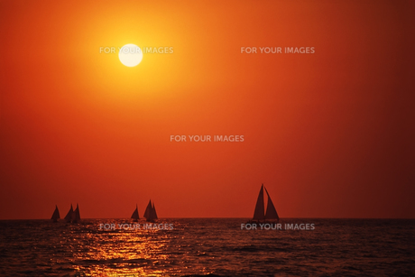 夕焼けに輝く海とヨット FYI00198082