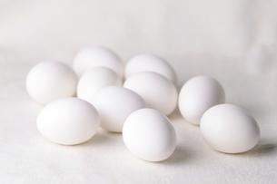 卵 FYI00198921