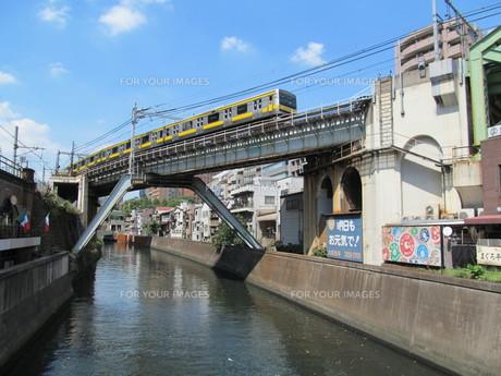 神田川と総武線 FYI00201731