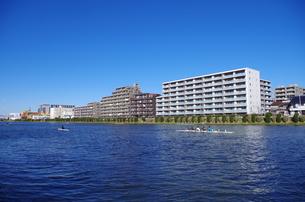戸田公園の池 FYI00202001