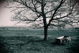 枯れ木と台車の素材 [FYI00202293]