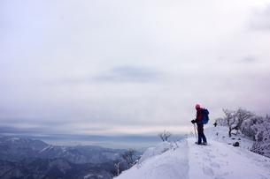 スノーシュー登山 FYI00204201