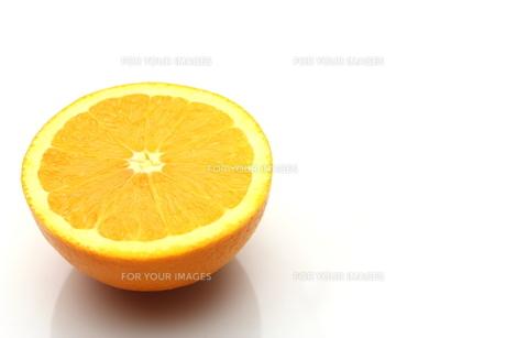 オレンジ FYI00211749