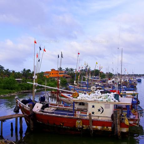 ニゴンボ港 FYI00213044
