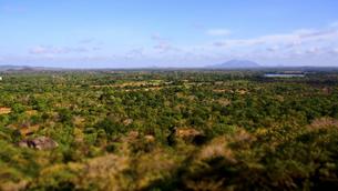 シーギリヤロックの頂上からの眺め FYI00213085