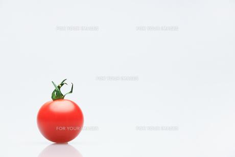 トマト FYI00214074