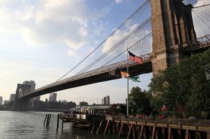 ブルックリン橋 FYI00216477