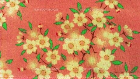 花柄とピンク FYI00219450