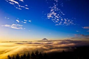 雲海と富士山 FYI00222807