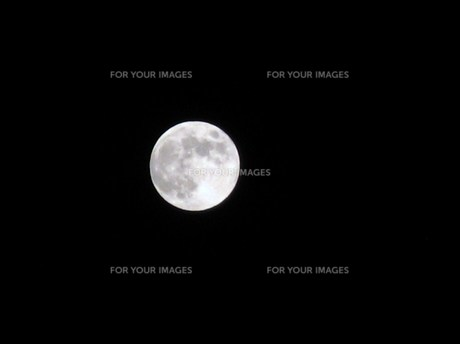 満月 FYI00225693