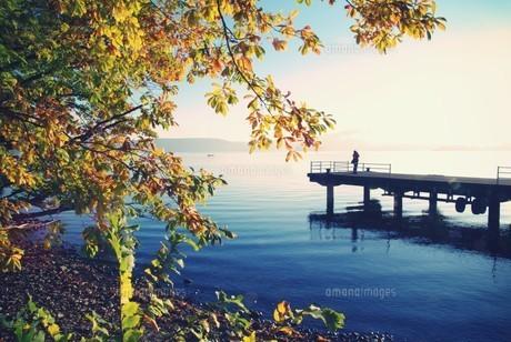 十和田湖の朝 FYI00226160