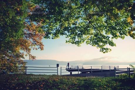 十和田湖畔 FYI00226164