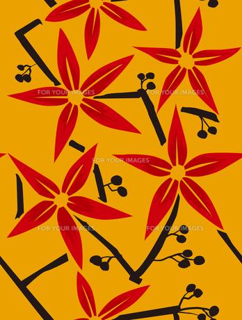 和柄、赤い花と実 FYI00227122