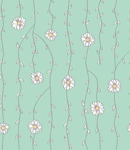 蔓植物と白い花 FYI00227124