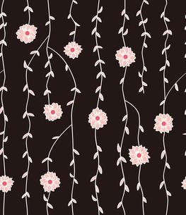 蔓植物と白い花 FYI00227143