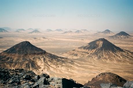バフレイヤオアシスの黒砂漠の素材 [FYI00231652]