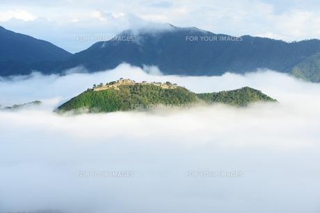 雲海に浮かぶ竹田城跡 FYI00232947