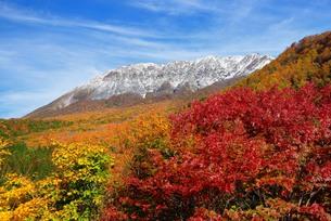 秋の大山 FYI00232957