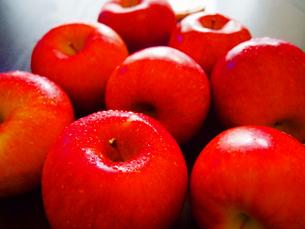 赤りんご FYI00234057