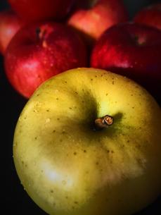 青りんごと赤りんご FYI00234064