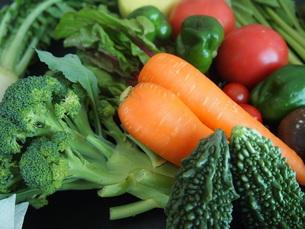 野菜集合 FYI00234071