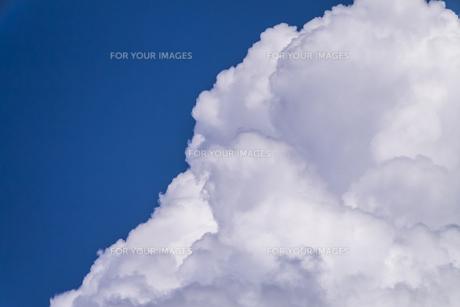 夏の青空 FYI00238943