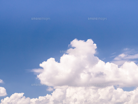 夏の青空 FYI00239007