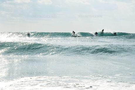 サーフィン FYI00239294