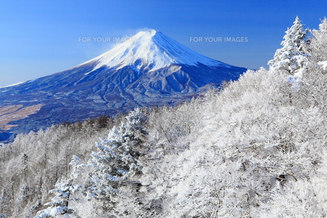 三ツ峠より富士を望む FYI00240773