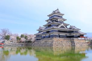 春の松本城 FYI00240812