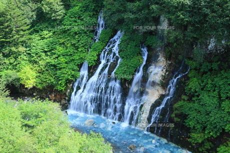 夏の白髭の滝 FYI00240946