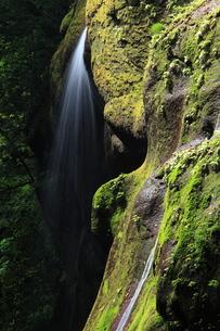 由布渓谷の滝 FYI00241002