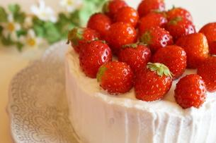 苺のケーキ FYI00242227