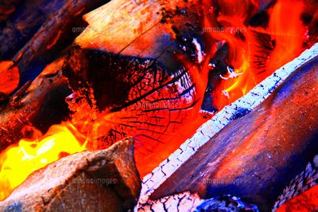 燃えさかる焚き木 FYI00248624