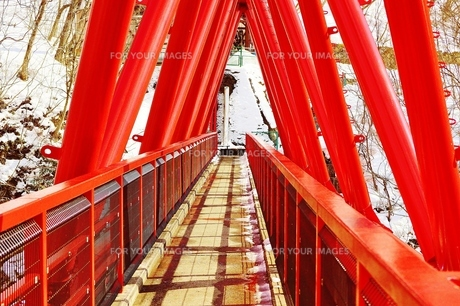 RED BRIDGE FYI00251289